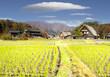 Leinwanddruck Bild - fall season of Historic Villages of Shirakawa-go and Gokayama, Japan