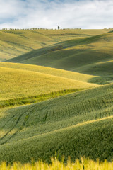 Panel Szklany Toskania Rolling hills of Tuscany