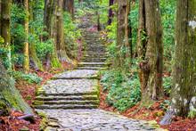 The Kumano Kodo Trail, A Sacre...