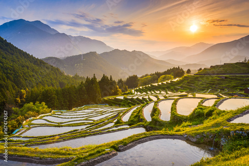 Rice terraces at sunset in Maruyama-senmaida, Kumano, Japan.