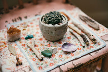 A Collection Of Eclectic Natural Objects In A Shrine