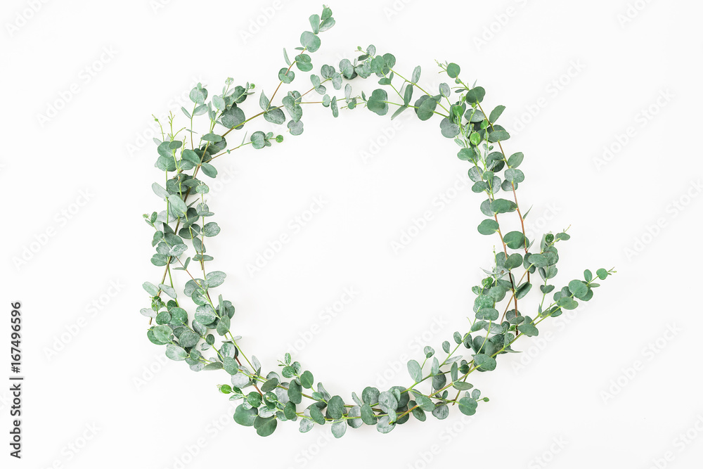 Fototapeta Floral round frame made of eucalyptus branches on white background. Flat lay, top view