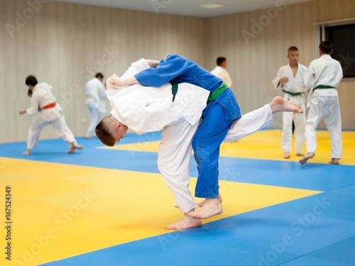 Fotografie, Obraz  Two unrecognizable judokas fighting