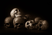 Genocides, Stacked Human Skulls At The Killing Fields, Sepia Tone