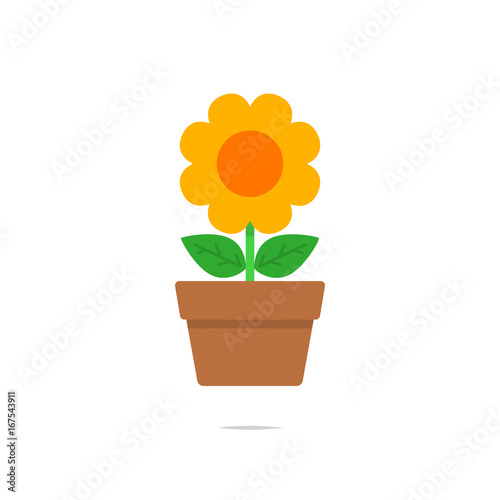 Fototapeta Flower in a pot vector isolated obraz
