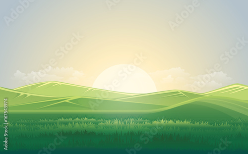 Summer green meadow and mountain landscape with sunset. vector illustration