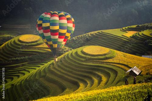 Garden Poster Rice fields Hot air balloon over rice field in Mu cang chai, Vietnam