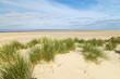 Dünenlandschaft auf Insel Borkum. Nordsee Ostfriesland.