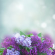 Bunch of fresh lilac flowers border over blue bokeh background with copy space