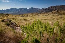 Desert Landscape Of White Sand...