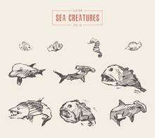 Set Realistic Sea Creatures Dr...