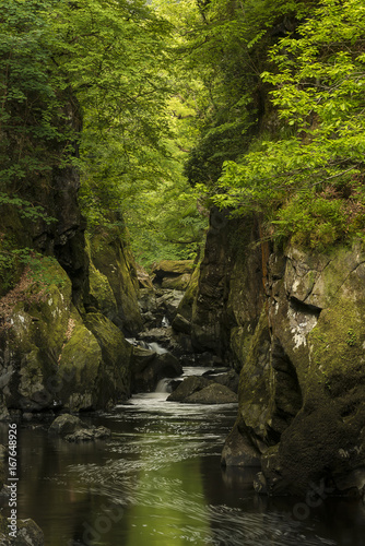 Spoed Foto op Canvas Grijze traf. Stunning ethereal landscape of deep sided gorge with rock walls and stream flowing through lush greenery