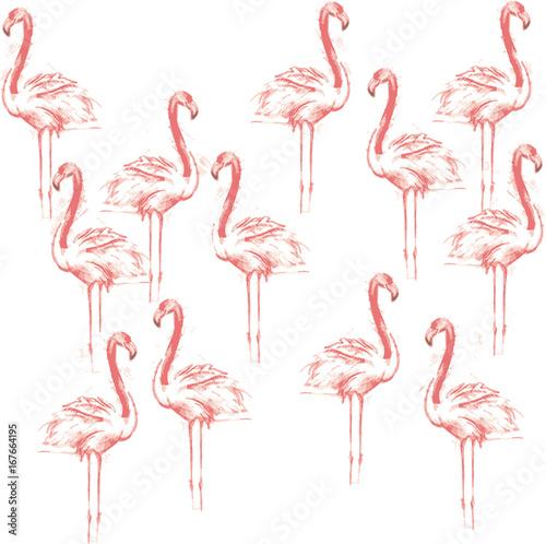 Canvas Prints Flamingo Bird Color sketch of pink flamingos