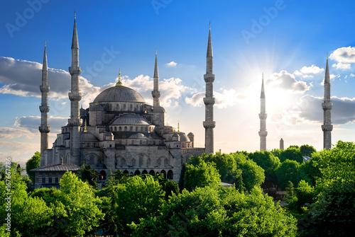 Poster de jardin Monument Famous Blue Mosque