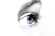 canvas print picture - Blaue Augen