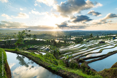Beautiful sunrise over the Jatiluwih Rice Terraces in Bali, Indonesia.