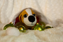 Small Plush Puppy In The Santa...