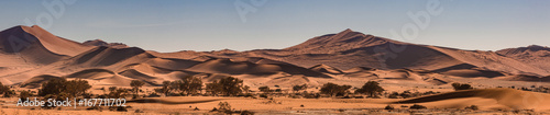 Staande foto Bleke violet Red dunes of the Namib Desert