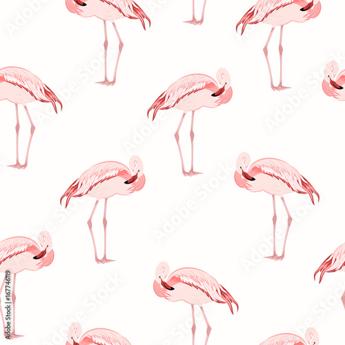 Tuinposter Flamingo Beautiful exotic pink flamingo wading bird standing posture. Seamless pattern on white background. Vector design illustration for fashion, textile, fabric, decoration.