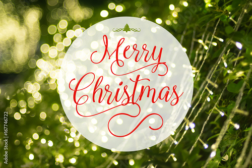 Fotografering  Merry Christmas word and xmas tree icon on at blurred background of green tree d