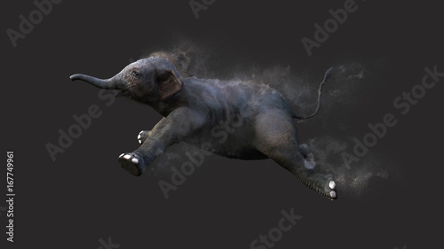 Baby Elephant Moving and Jumping With Dust Particle Effect on Gray Background, 3 Canvas Print