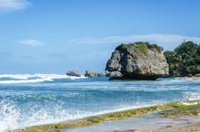 Single Rock On The Beach Coral Rock On The Beach Of Bathsheba, Barbados, Caribbean Islands