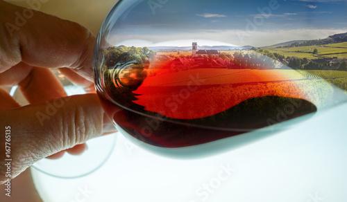 Fotografia composition vignes dans verre de vin