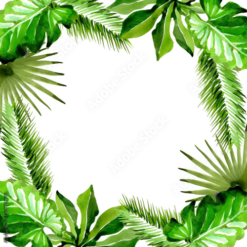 Tropical Hawaii leaves palm tree frame in a vector style. Aquarelle ...