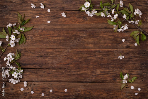 Spring flowers. Branches of a flowering cherry on a brown table.