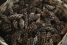 Big Straw Basket Full Of Pinecones