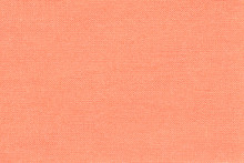 Light Coral Background From A ...