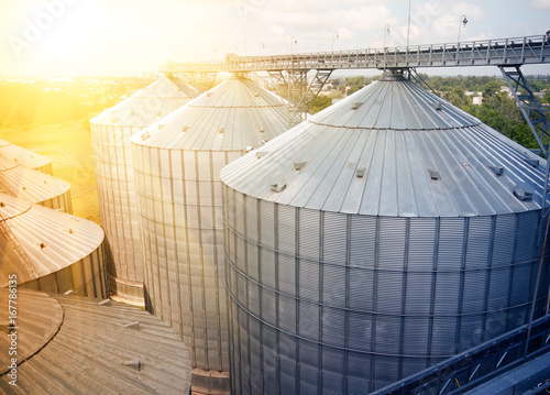 Obraz Grain storage silos. Galvanized tanks for grain. Granary with mechanical equipment for receiving, cleaning, drying, grain shipment - fototapety do salonu