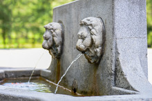 Old Stone Lion Head Fountain In Park In Montreal