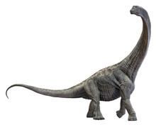 3D Rendering Of Alamosaurus, I...