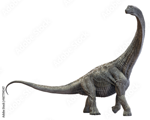 Fotografie, Obraz  3D rendering of Alamosaurus, isolated on a white background.