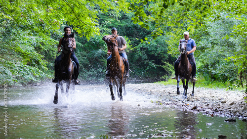 Poster Equitation Horse riding on the river