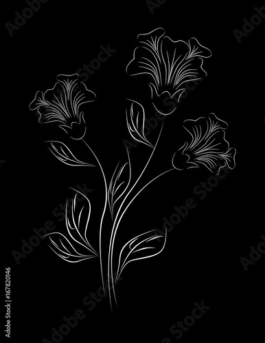 Fotobehang Bloemen zwart wit Beautiful monochrome black and white flowers and leaves isolated.