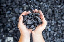 Coal In Hand