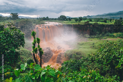Poster de jardin Olive Nacimento del Nilo Azul. Etiopia
