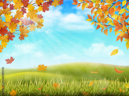 Rural hilly landscape in autumn season. Tree branches with yellow and red leaves on front plan. Grass with fallen foliage on background. Vector realistic illustration.