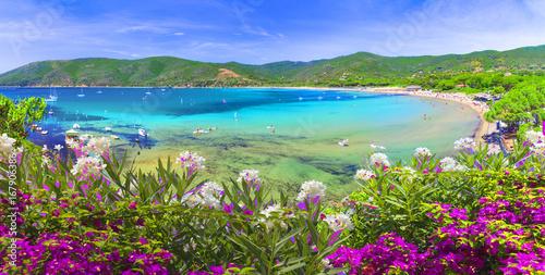 Foto op Canvas Toscane Laconella beach, Lacona region, Elba Island, Tuscany,Italy.