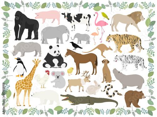 動物のイラストセット Poster Mural XXL