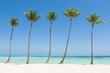 Juanillo Beach (playa Juanillo), Punta Cana, Dominican Republic. Palm-fringed beach.
