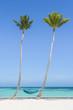 Juanillo Beach (playa Juanillo), Punta Cana, Dominican Republic. Empty hammock on a palm-fringed beach.