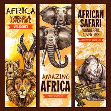 African Safari Outdoor Adventure Sketch Banner Set
