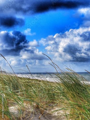 Foto auf AluDibond Nordsee landscape