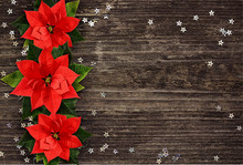 Christmas Poinsettia Flowers Line On Wood
