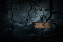 Cross Over Old Fence, Dead Tree, Moon And Cloudy Sky, Spooky Background, Halloween Concept