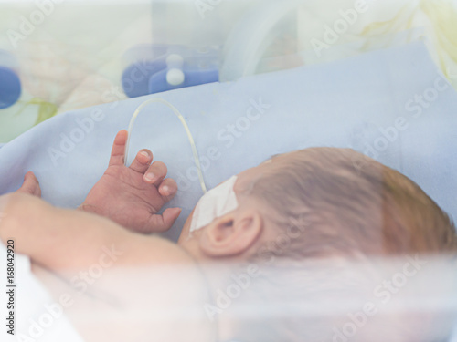 Obraz Sick newborn baby, infant in an incubator after preterm birth at intensive care unit or neonatal room at hospital - fototapety do salonu