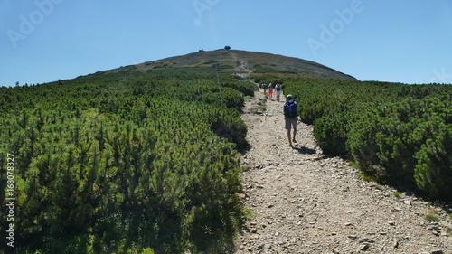 Photo  W górach